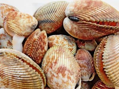 Những mẹo chọn hải sản tươi ngon cho chị em nội trợ