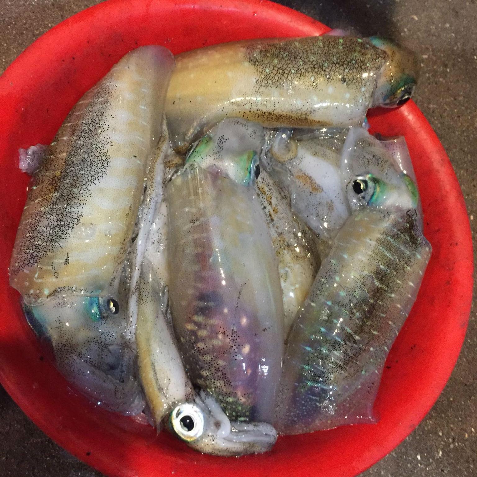 Kinh nghiệm lựa chọn hải sản Đà Nẵng